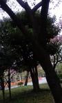 100420_1035~01.jpg