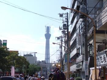 神輿とtree_1.JPG
